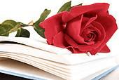 Les poèmes sur la déclaration d'amour
